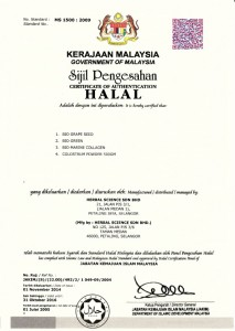 malay1
