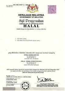 malay2