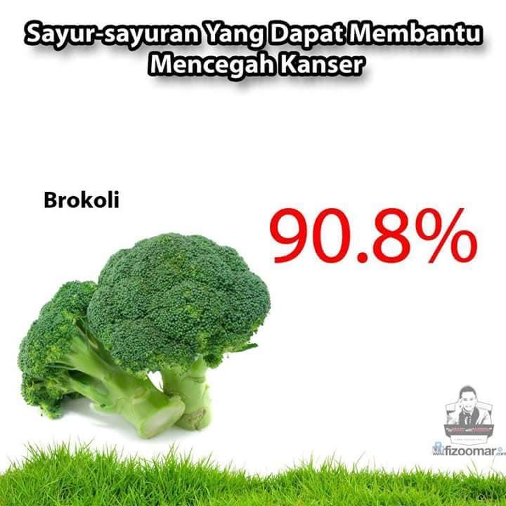 Sayuran pencegah kanker